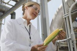 ethanol-biodiesel.jpg