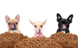 Onset Pet Treat Company