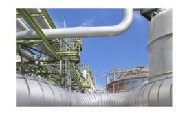 Petro Canada Feature Image