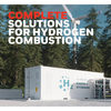 Complete Solutions for Hydrogen Combustion